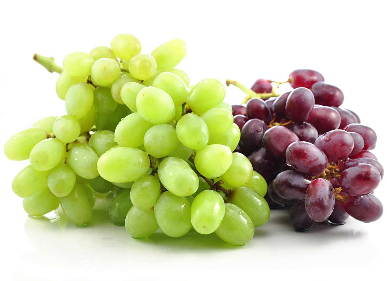 photodune-793902-grape-l.jpg